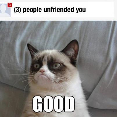 People Unfriended You Grumpy Cat Memes