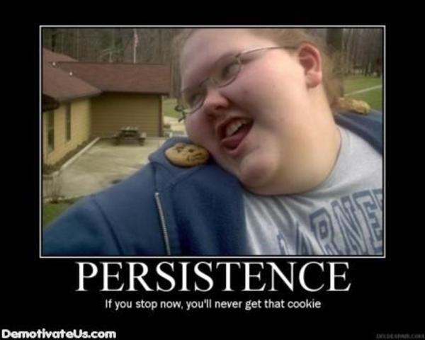 Persistence if you stop now you'll never get the coolie Cookie Meme
