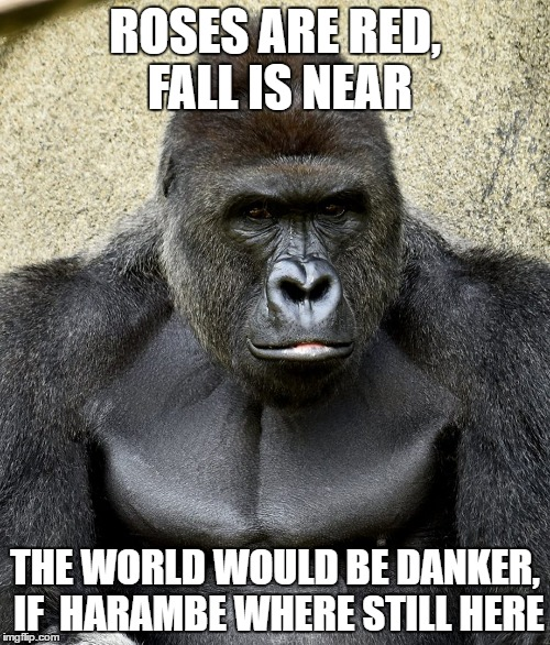Roses Are Red Fall Is Near The World Would Be Danker Harambe Memes