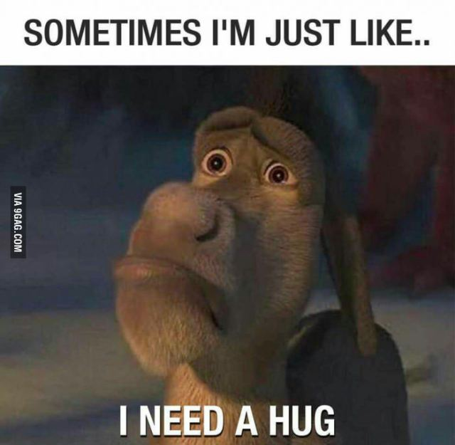 Sometimes I'm just like i need a hug Funny Hug Meme