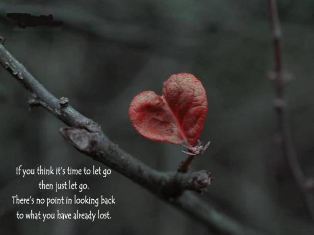 Time Quotes If you think its time to let go then just let go there's no point in looking back to what you have already lost