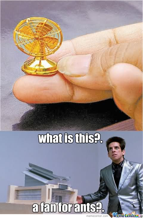 WTF Shit Meme What is this a fan for ants
