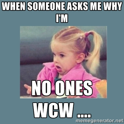 Wcw Quotes When someone asks me why i'm no ones WCW