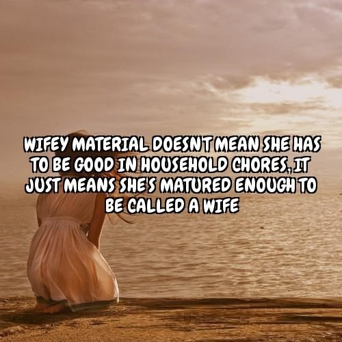 Wifey Quotes Wifey material doesn't mean she has to be good in household chores