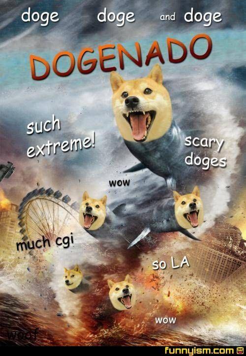 doge doge and dogenado such extreme doge meme