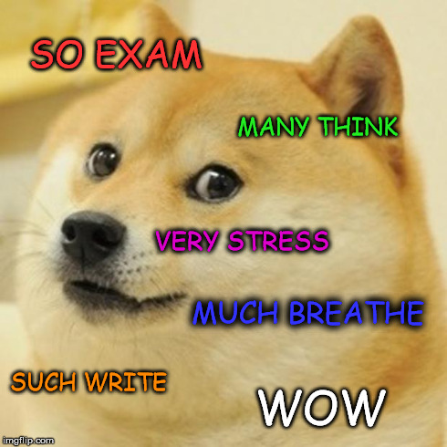 doge meme so exam many think very stress