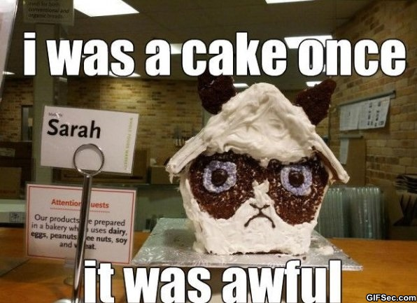 i was a cake once it was awful Cake Meme
