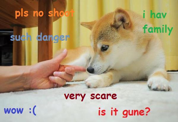 pls no shoot i have family such danger doge meme