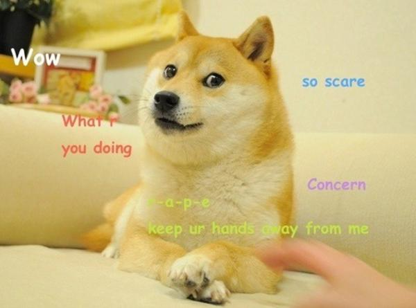 wow so scare what you doing concern doge meme