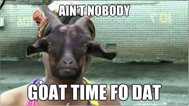 Aint nobody goat time fo dat Goat Memes