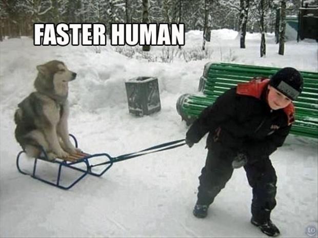 Bike Meme Faster human