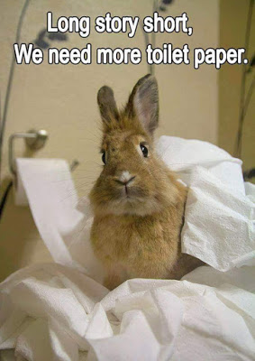 Bunnies Meme long story short we need more toilet paper