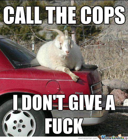 Call the cops i don't give a fuck Cops Memes