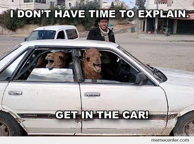 Camel Meme i don't have time to explain get in the car