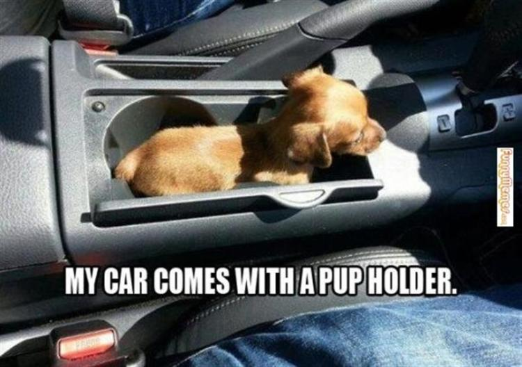 Car Memes my car comes with a pup holder