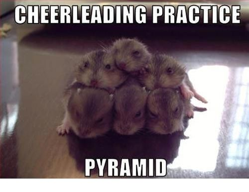 Cheerleading Meme cheerleading practice pyramid