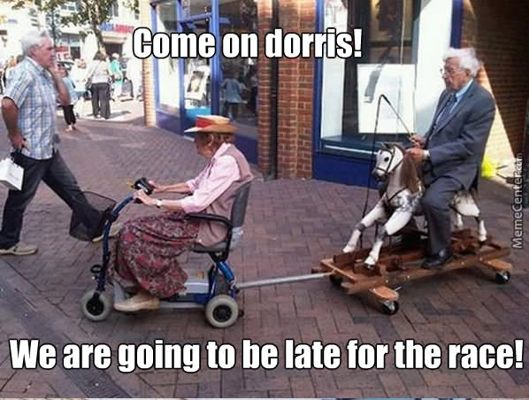 Come on dorris we are going to be late for the race Horse Memes