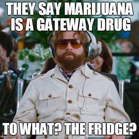 Drugs Meme They say marijuana is a gateway drug to what