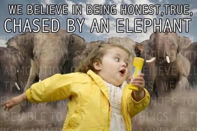 Elephant Meme We believe in being honest true chased by