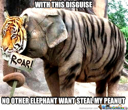 Elephant Meme With this disguise no other elephant want steal my peanut