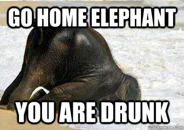 Elephant Meme go home elephant you are drunk