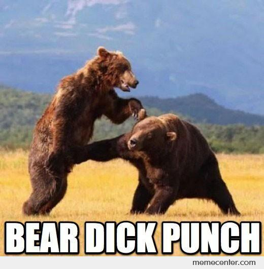 Fight Meme Bear dick punch