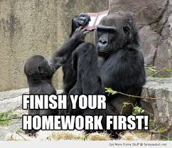 Finish your homework first Monkey Memes