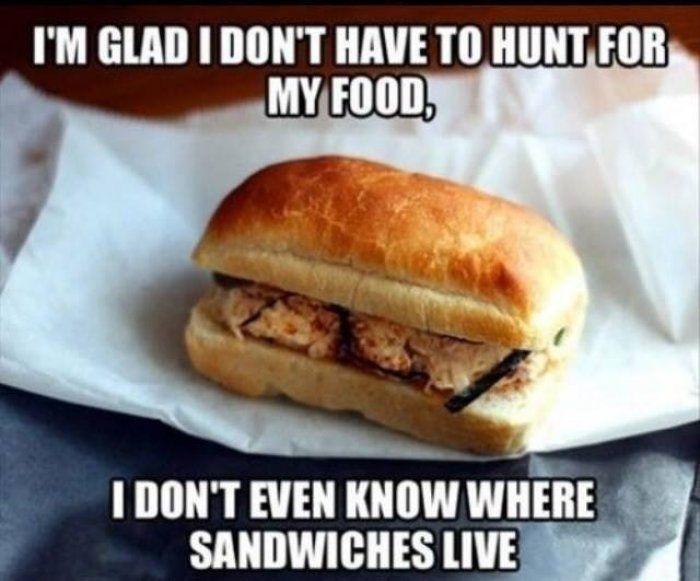 Food Meme im glad i dont have to hunt for my food