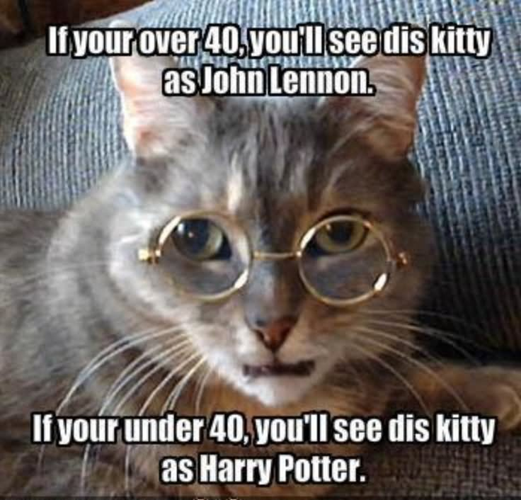 Girls Meme If your over 40 you'll see dis kitty as john lennon