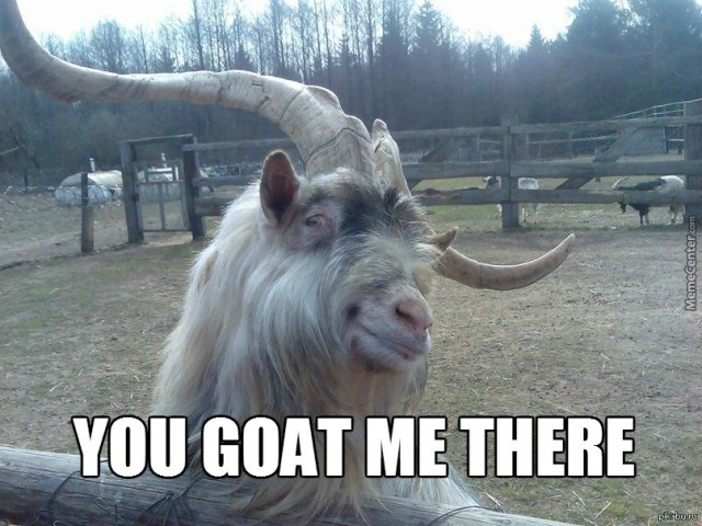 Goat Memes You goat me there