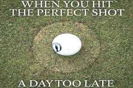 Golf Memes When you hit the perfect shot a day too