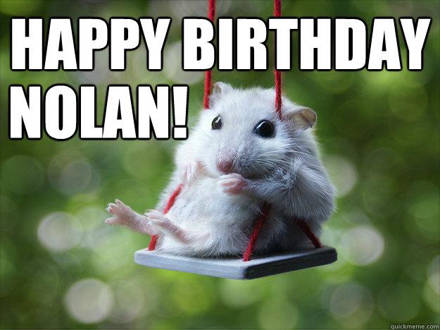 Happy birthday Nolan Hamster Meme