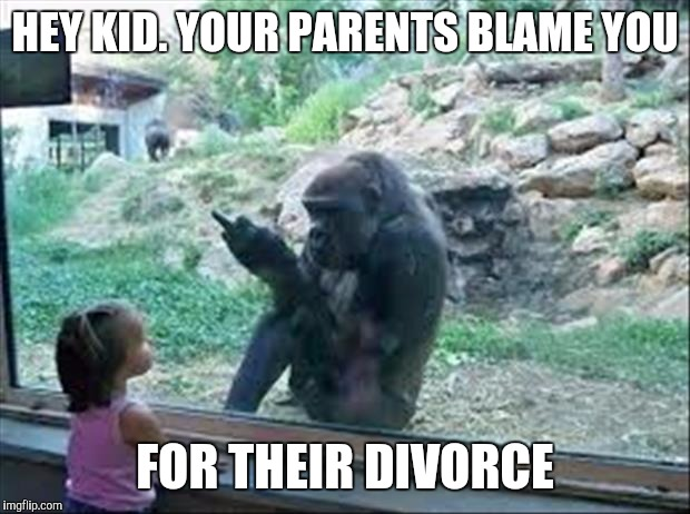 Hey kid your parents blame you for their divorce Monkey Memes
