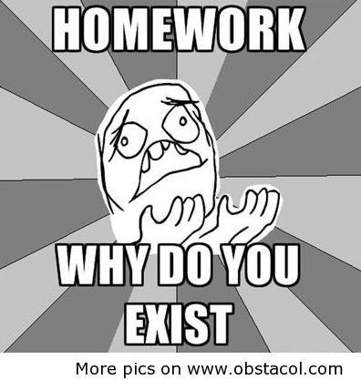 Homework Meme homework why do you exist