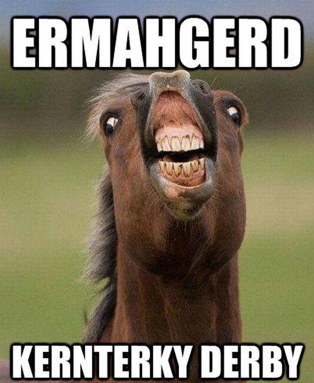 Horse Meme Ermahgerd kernterky derby