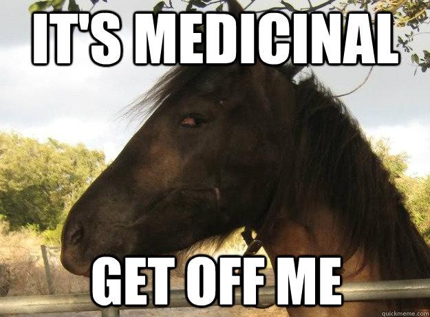 Horse Memes it's medicial get off me