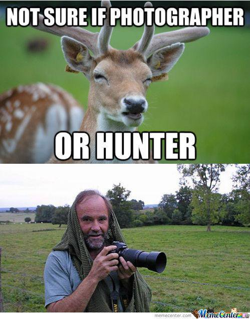 Hunting Meme Not sure if photographer or hunter