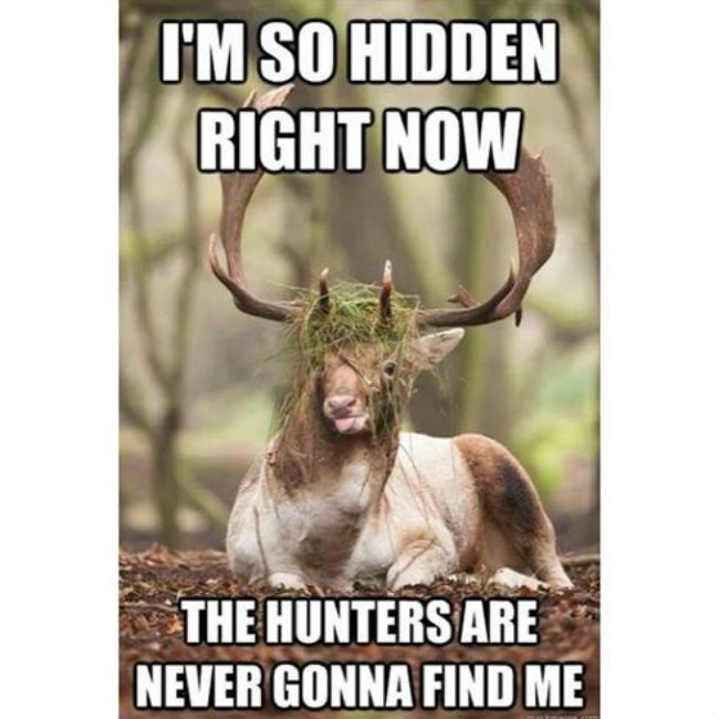 Hunting Meme I'm so hidden right now