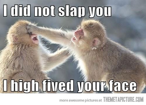 I did not slap you i high fived your face Monkey Memes