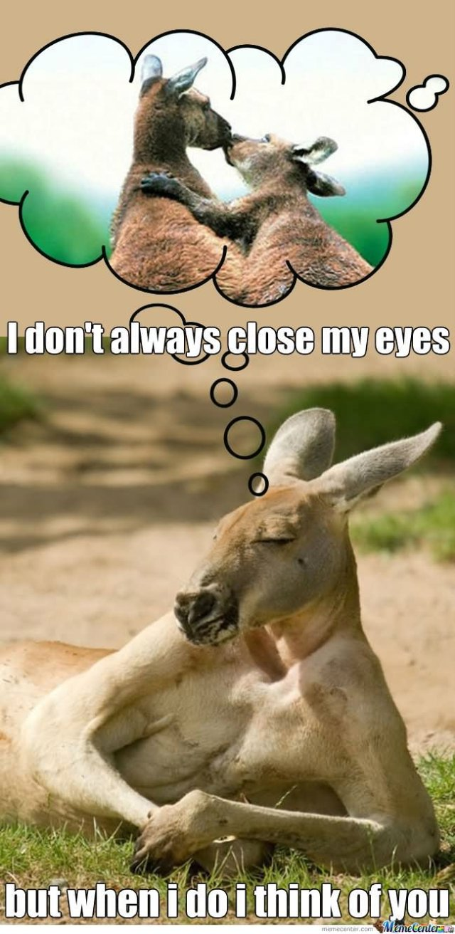 I don't always close my eyes Kangaroo Meme