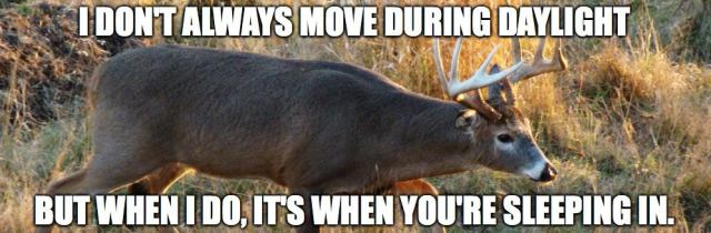 I don't always move during daylight Hunting Meme