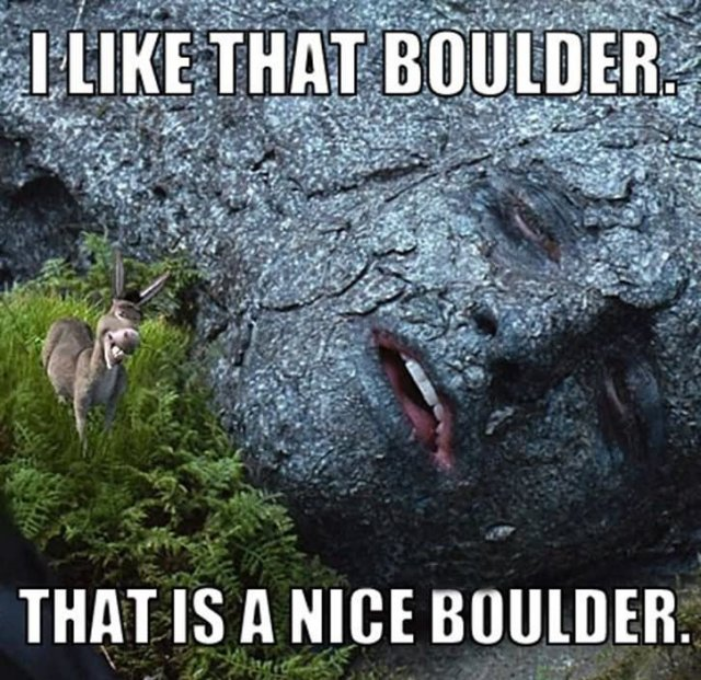 I like that boulder that is a nice Donkey Meme