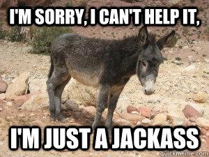 Im sorry i cant help it im just Donkey Meme?fit=300%2C225 im sorry i can't help it im just donkey meme picsmine,Im Sorry Meme