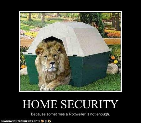 Lion Memes Home security because sometimes a rottweller is