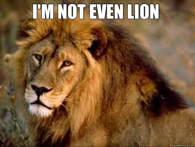 Lion Memes I'm not even lion