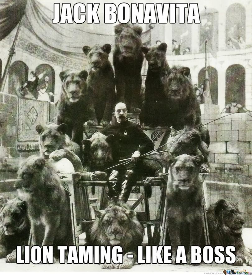 Lion Meme Jack bonavita lion taming like a boss