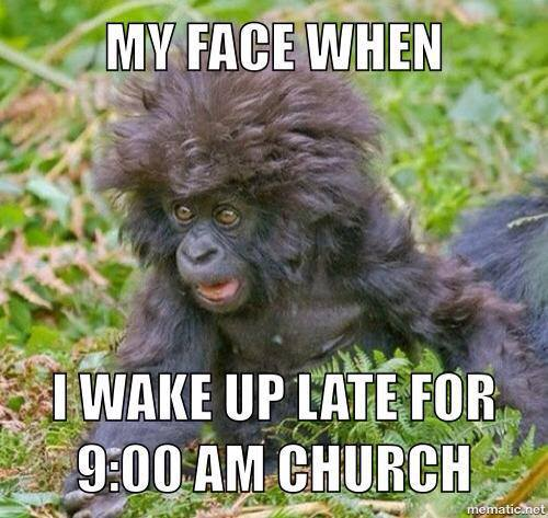 Monkey Meme My face when i wake up