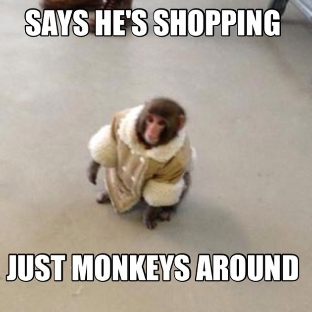 Monkey Meme Says he's shopping just monkeys around