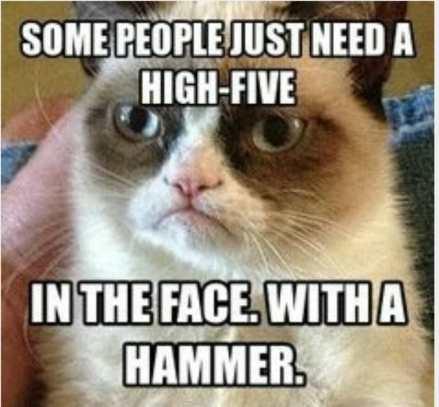 Monkey Meme Some people just need a high five in the face with a hammer