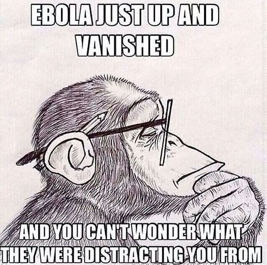 Monkey Meme Ebola just up and vanished and you can't
